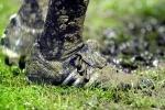 Το ερασιτεχνικό ποδόσφαιρο στον βούρκο των παραγόντων (του Γιάννη Μαυρόπουλου)